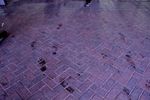 Footsteps (Perspective) by tsundoku