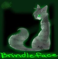 Brindleface of ThunderClan by GraffitiMutt