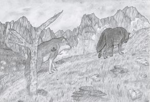 The long hike by Nikki-vdp
