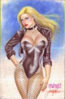 BLACK CANARY by JUN DE FELIPE (05262013) by rodelsm21