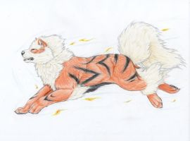 Sergio's Arcanine by mysteriouswhitewolf