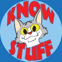 Know with the Flow by PlummyPress