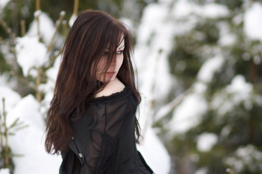 Black Winter 1 by liam-stock