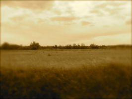 South of France - Sepia by Noemy009