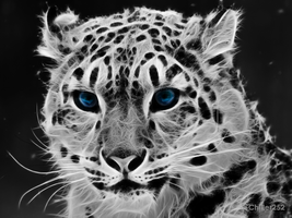 Ice Leopard by Chiller252