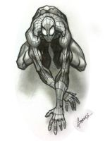 Spider-Man Sketch by Grange-Wallis