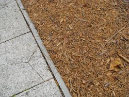 00025 - Wood Chips and Cracked Pavement by emstock