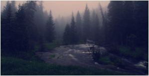 July Fog by wyorev