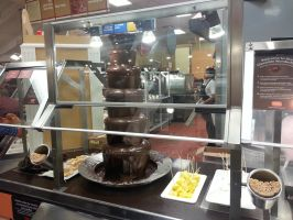 Golden Corral Chocolate Wonderfall by canona2200
