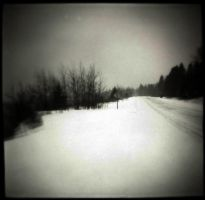 Winter Road by intao