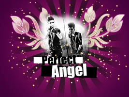 perfect angel 2 by kaulitzway
