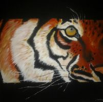 Tiger (cropped) by joelhauser