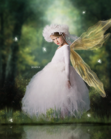 Forest Fairy by Jeni-Sue