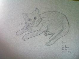 Cat drawing by AmiePC