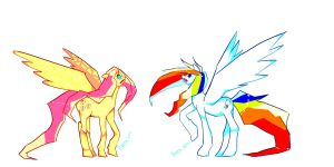 MLP-Fluttershy and Rainbowdash by DivaWho