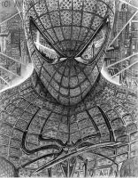 Amazing Spider-man by Wanted75