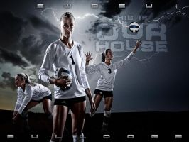Bulldogs Volleyball Poster by kylewright