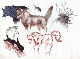 wolves by luve