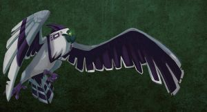 Harpy Eagle by doingwell