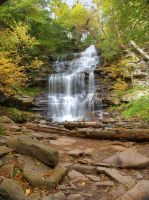Ricketts Glen State Park 78 by Dracoart-Stock