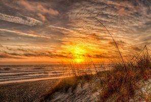 Warm Duval Sunrise by 904PhotoPhactory