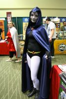Eccc 2013 Raven by nwpark