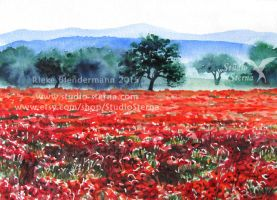 Poppy Field by rieke-b