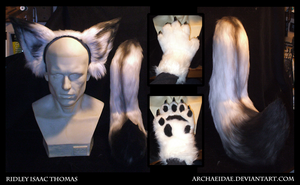 Commission: Arctic Fox Set by Archaeidae