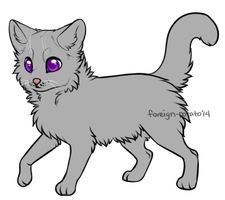Warrior Cat Lines: Apprentice by foreign-potato