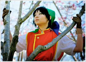 Suikoden: Tir Mcdohl 2 by SoySauceCosplay