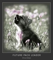 Future Pack Leader by Missionpb