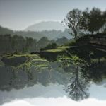 ...Tranquillity... by ditya
