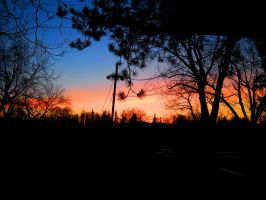 Sunset at Bloedel Donovan Park by SkyfireDragon