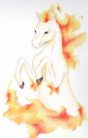 Fire horse by Uskall