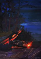 Cold night near the fire by SatynaPaper