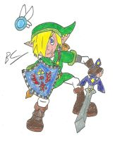 Link, Hero of Hyrule by BlackCarrot1129