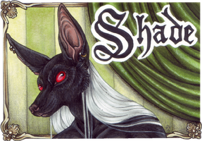 Badge - Shade by BloodhoundOmega