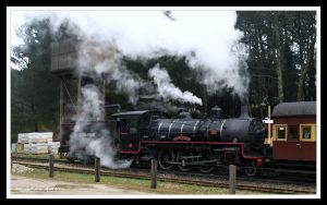 Steam Train by FireflyPhotosAust
