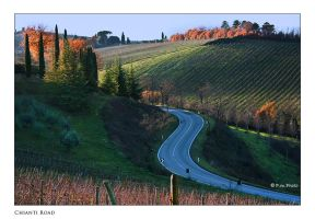 Chianti Road by Marcello-Paoli