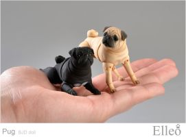 BJD dog - Pug by leo3dmodels