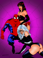 Spiderman Mary Jane and Black Cat by winchester01