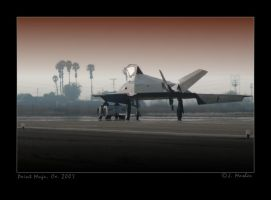 Nighthawk, 25 Years. by jdmimages