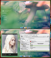 Archlinux Gnome shell 3.4 by Elchacmool