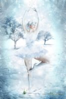A Winter's Dance by Toefje-Kunst