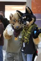 Good Friends - MFF 2012 by LightningTheFox7