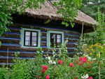Cottage by UltimateOpportunist