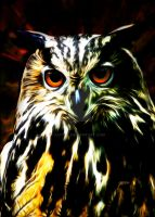 Eagle Owl by Catoul