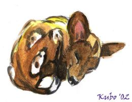 Painted Dog by kubo