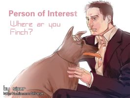 person of interest Reese by liuhagaren