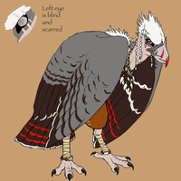 Yun the Vulture by PrinzeBurnzo